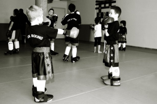 cours usv kickboxing